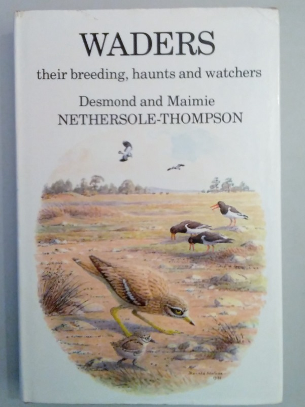 Image for Waders. Their Breeding, Haunts and Watchers